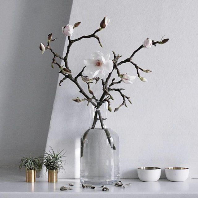 Oh so pretty kaatjecom Magnolia    magnolia springhellip